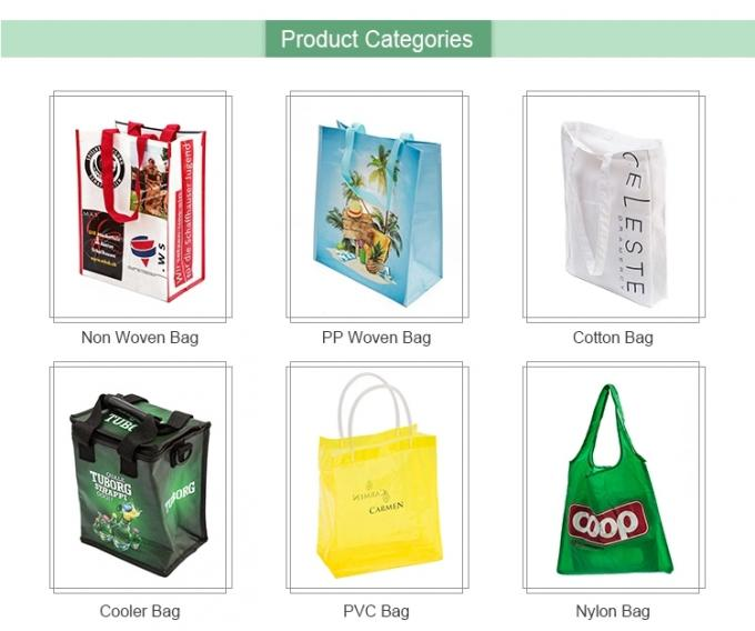 Handled Biodegradable Shopping Bags , Recycling 60 - 120gsm Pp Non Woven Bags